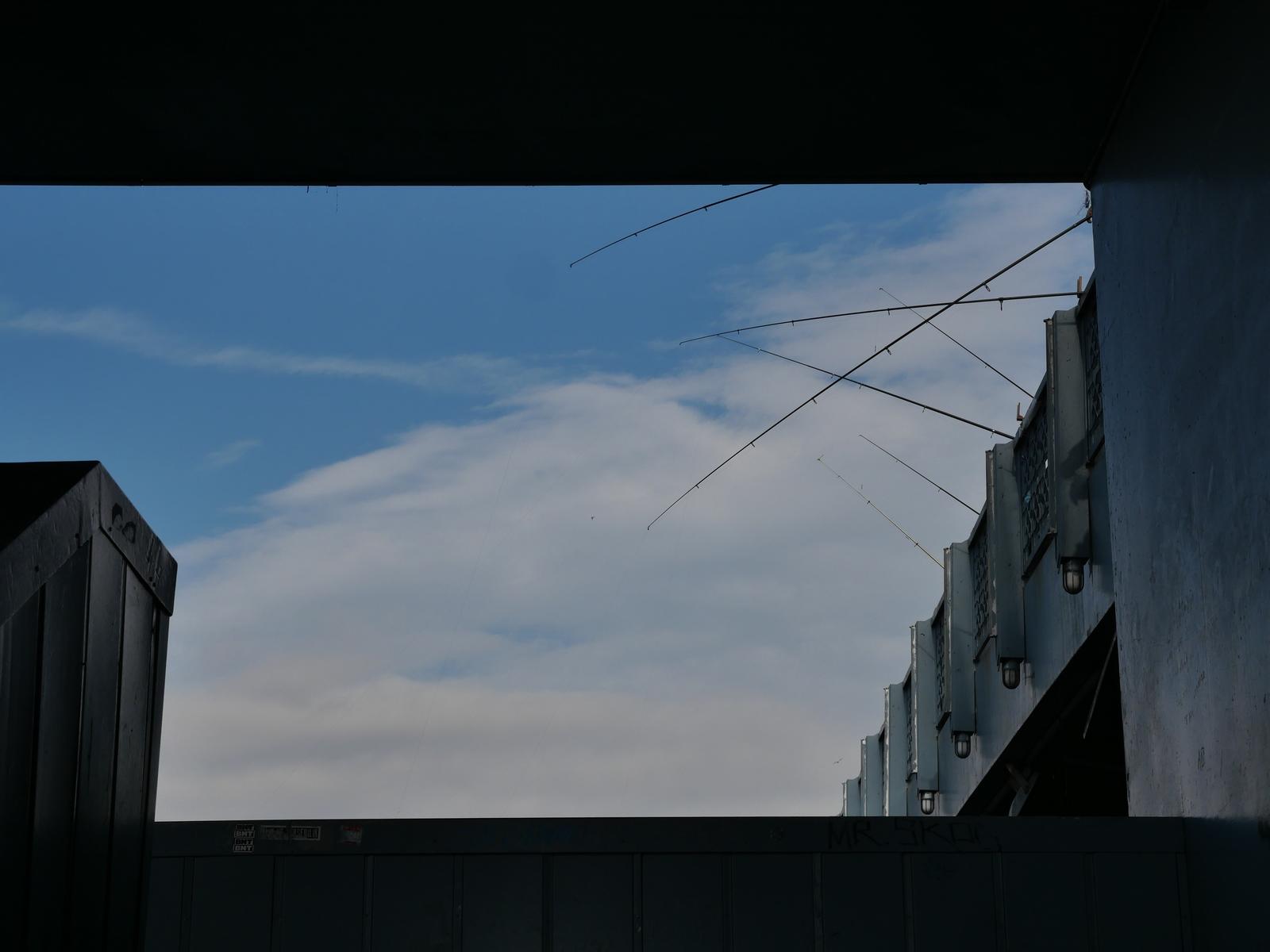 Sur le tapis du vent
